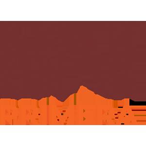 Logo-BNIPrimera